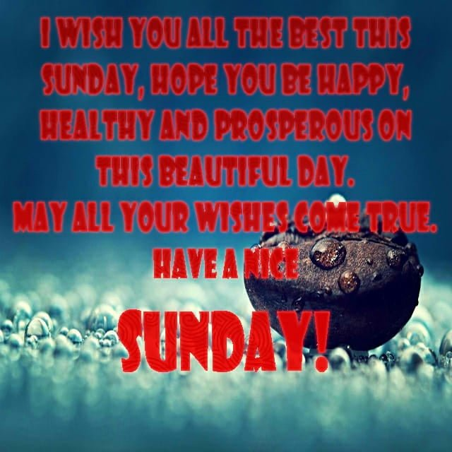 Happy Sunday Hd WallpaperFor Facebook