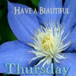 Happy Thursday Hd Images