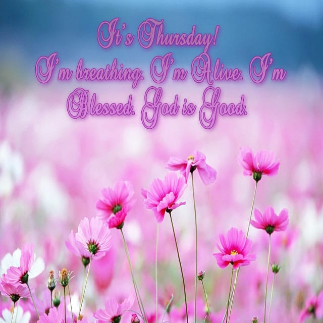 Happy Thursday Hd Images For WhatsApp