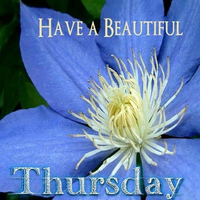Happy Thursday Hd Images