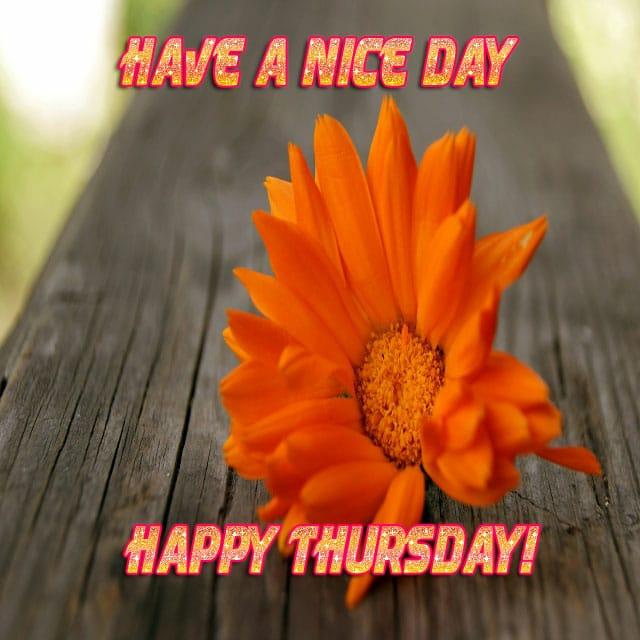 Happy Thursday Hd PhotosFor Facebook