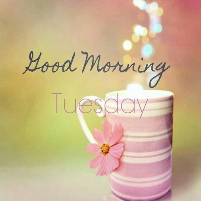 Happy Tuesday Hd Greetings For Facebook