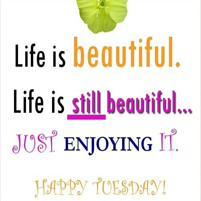 Happy Tuesday Hd Greetings For Whatsapp