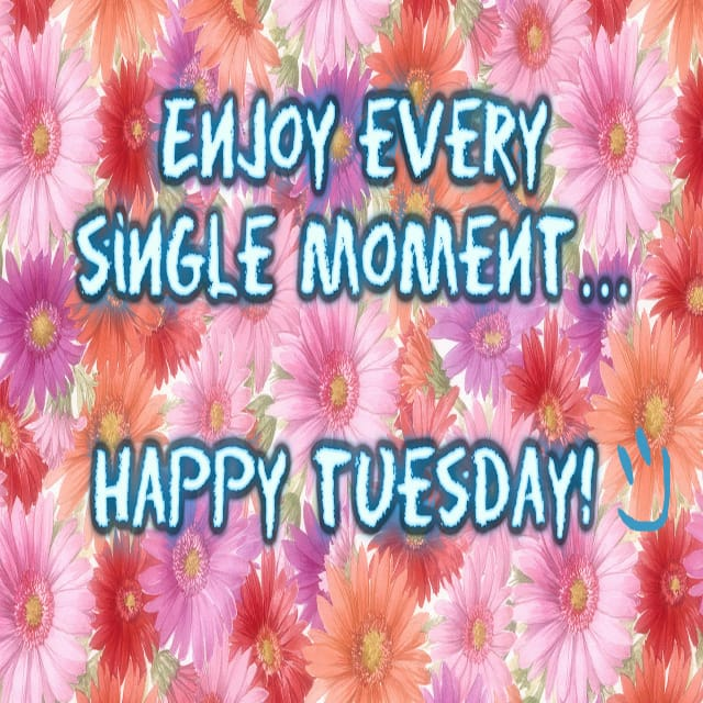 Happy Tuesday Hd Greetings