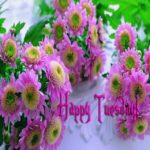Happy Tuesday Hd Images