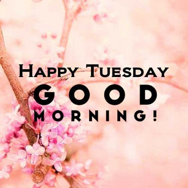 Happy Tuesday Hd Images For Whatsapp