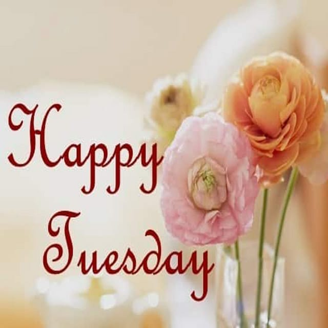 Happy Tuesday Hd Photos For Facebook