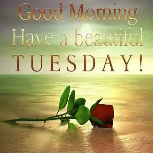 Happy Tuesday Hd Images Wallpaper Pictures Photos Happy Tuesday Wallpaper