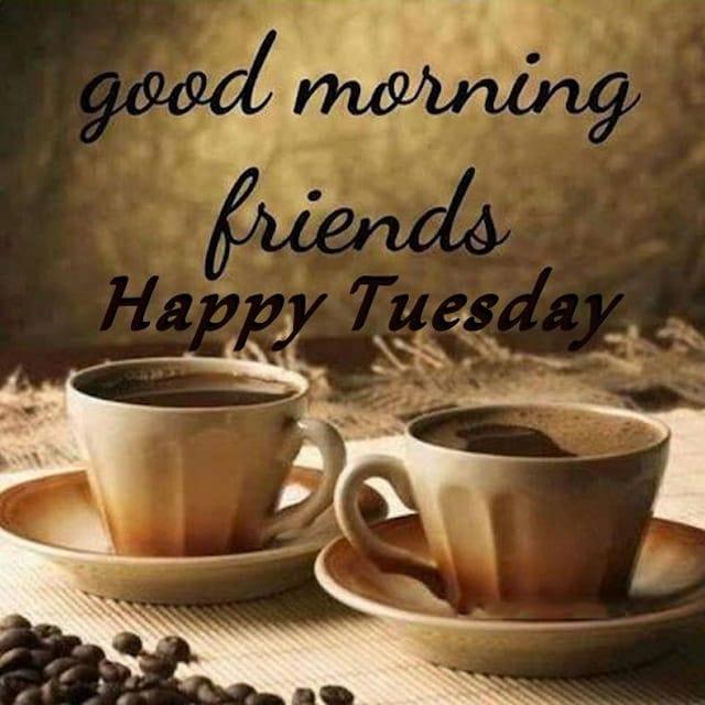 Happy Tuesday Hd WallpaperFor Whatsapp