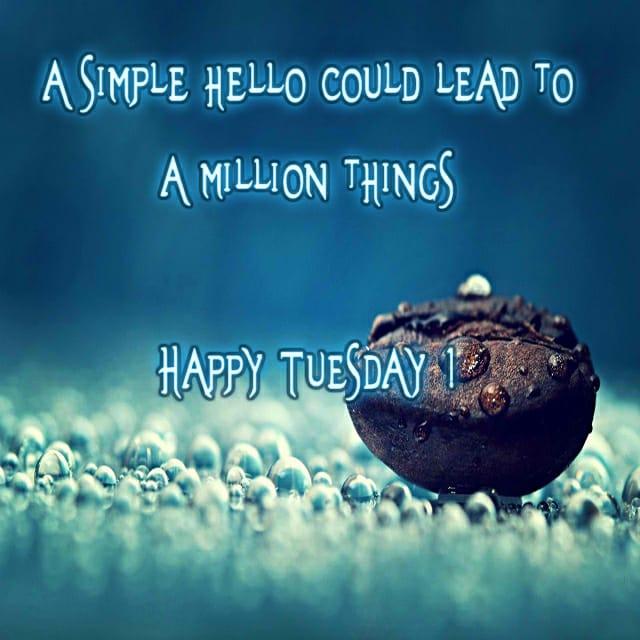 Happy Tuesday Hd Wallpaper