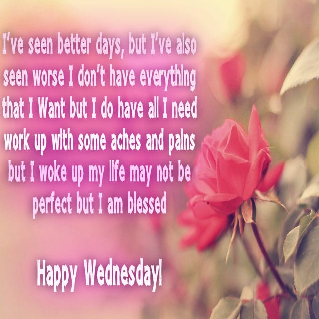 Happy Wednesday Hd Greetings