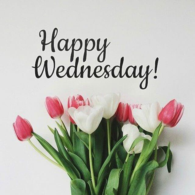 Happy Wednesday Hd Images