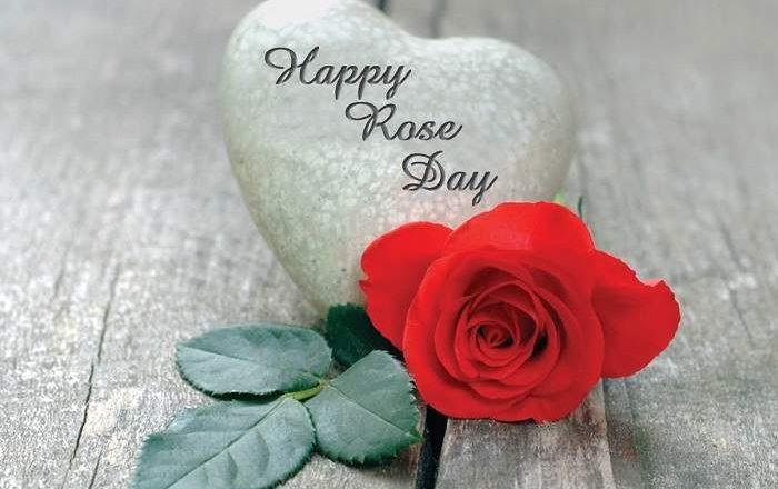 Rose Day WhatsApp Dp 2019