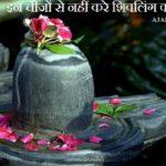 Shivling Par Kya Nahi Chadana Chahiye