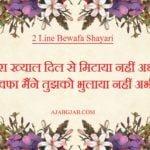 2 Line Bewafa Shayari