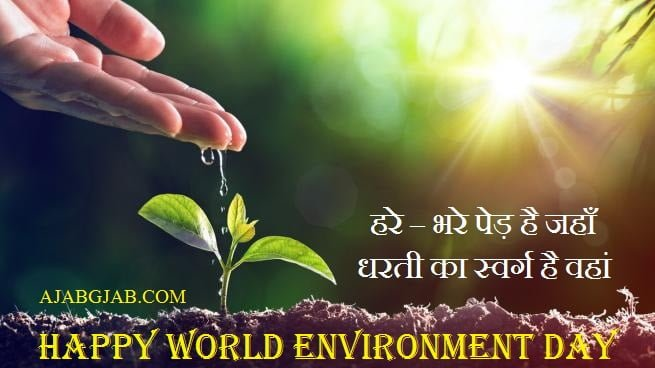 Environment Day Wishes In Hindi