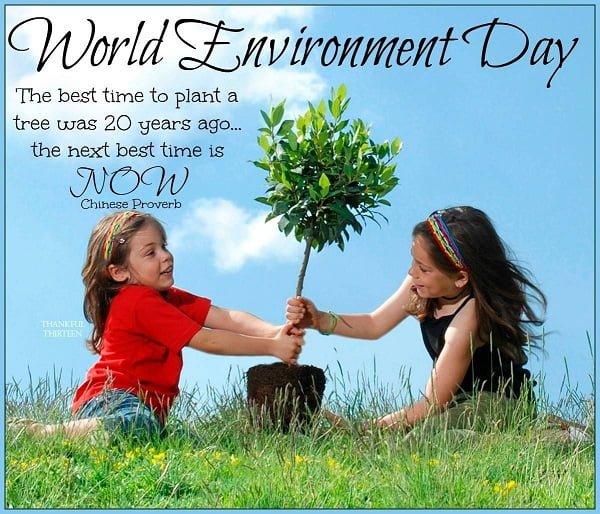 Happy Environment Day Wallpaper