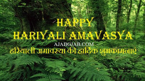 Hariyali Amavasya Hd Images