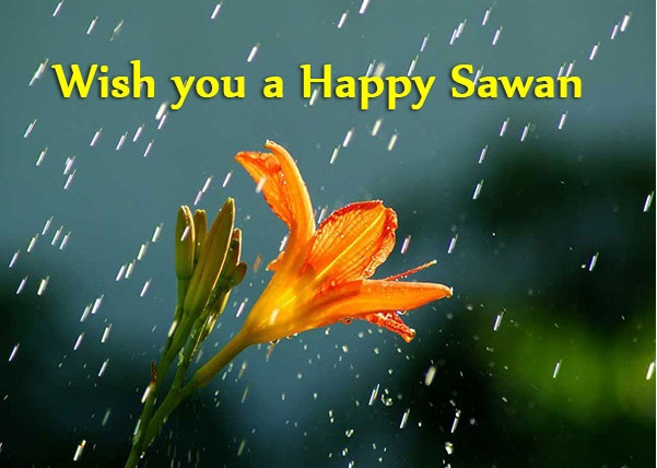 Latest Happy Sawan Hd Photos