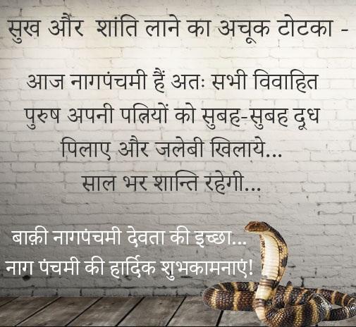 Nag Panchami Funny Shayari