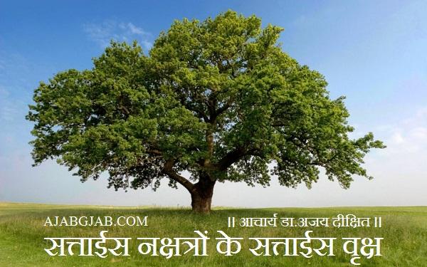 ।। आचार्य डा.अजय दीक्षित ।।