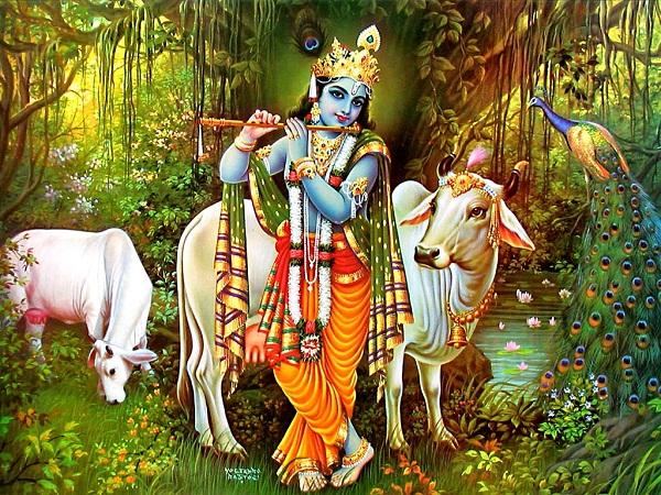 Shri Krishna Hd Greetings