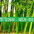 Prerak Prasang - Bans Ka Ped