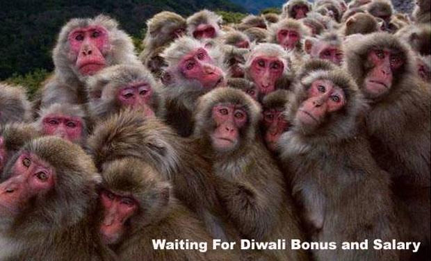 Happy Diwali Funny Wallpaper Free Download