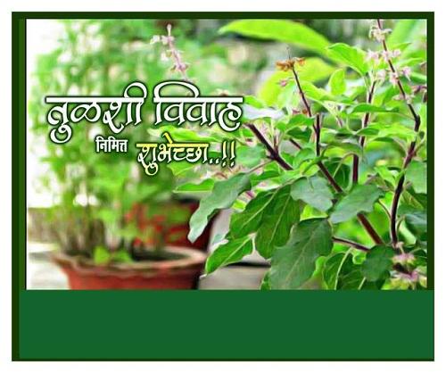 Tulsi Vivahachya Shubhechha Images 2019