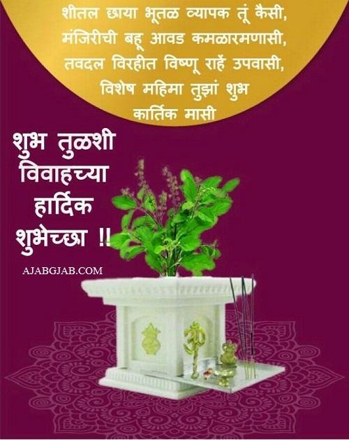 Tulsi Vivahachya Shubhechha Images