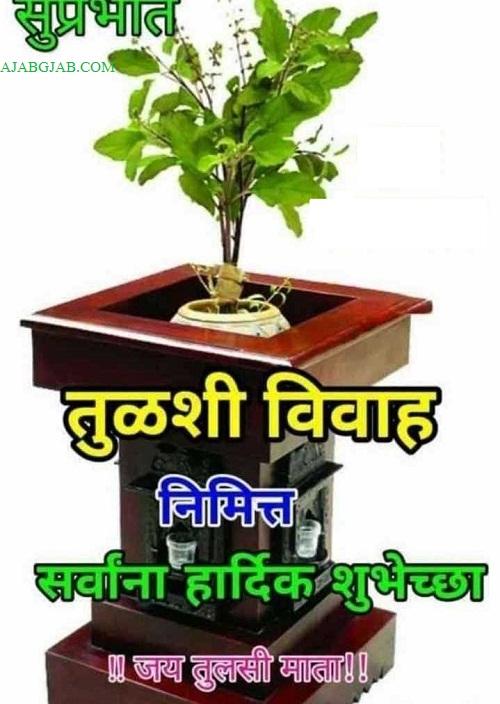 Tulsi Vivahachya Shubhechha Wallpaper For WhatApp