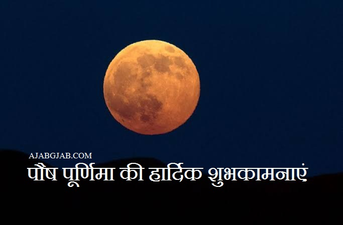 Paush Purnima Wishes In Hindi