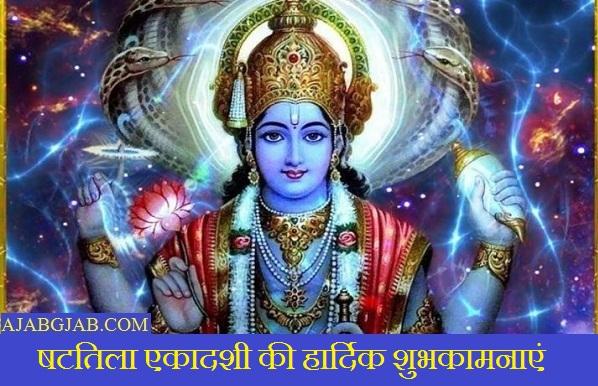 Shattila Ekadashi Messages In Hindi