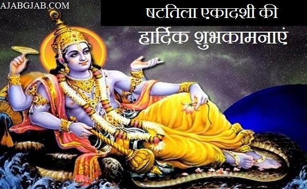 Shattila Ekadashi Photos Free Download