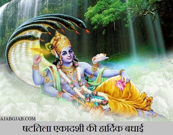Shattila Ekadashi Wishes In Hindi