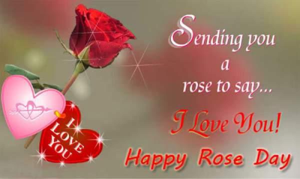 Rose Day 2020 Pics