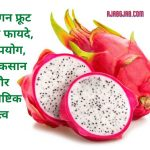 Dragon Fruit Benefits In Hindi