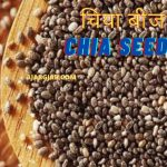 Chia Seeds In Hindi