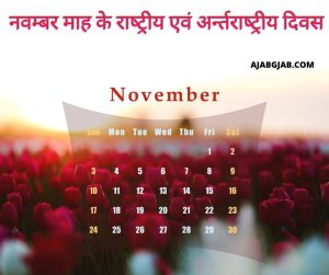 National and International Day of November Month in Hindi