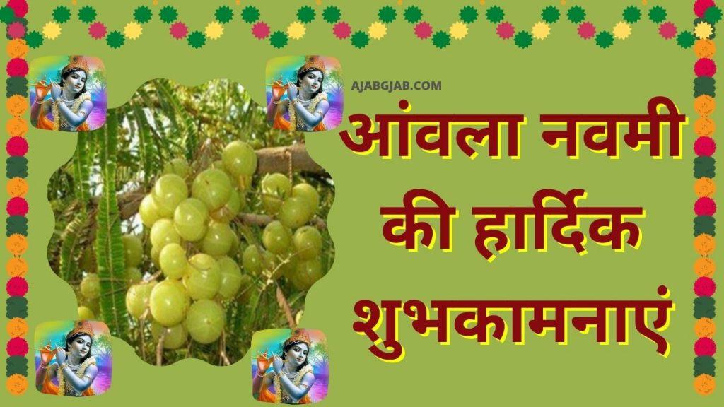 Amla Navami Wishes In Hindi
