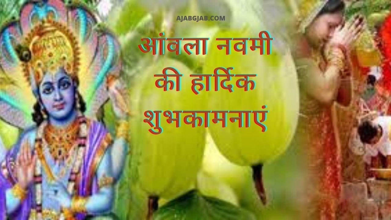 Amla Navami SMS In Hindi