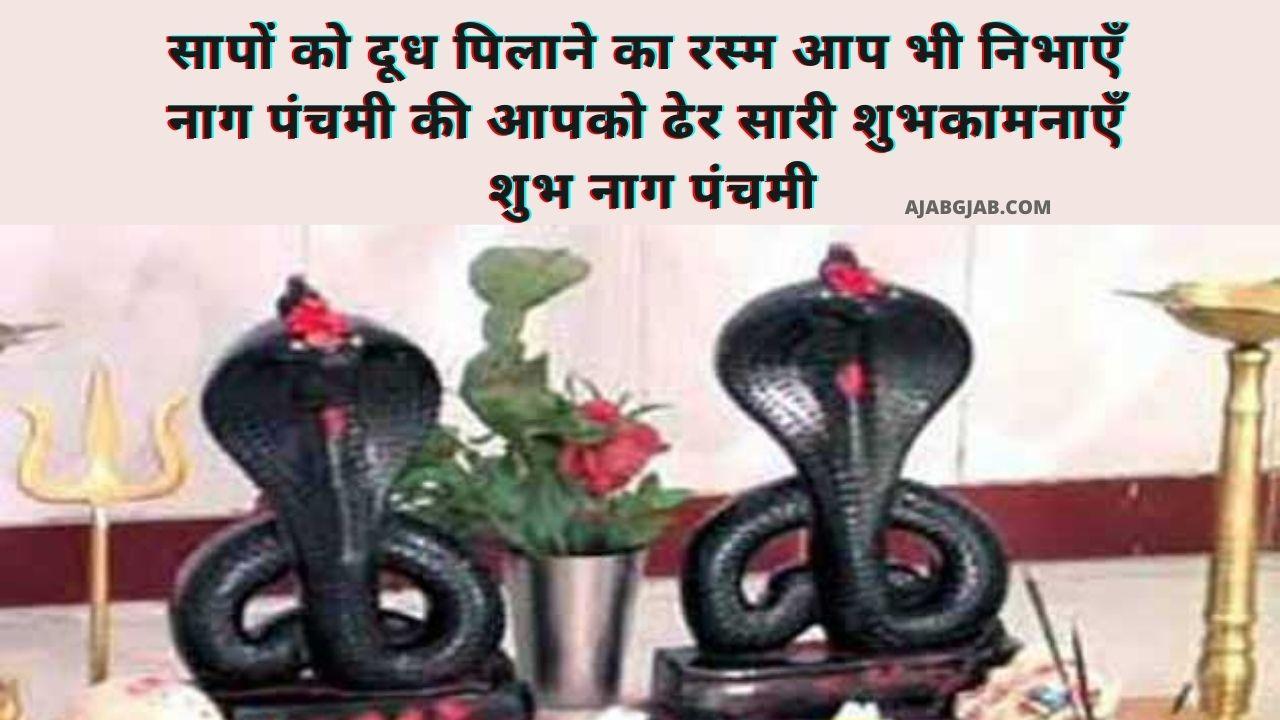 Happy Nag Panchami Shayari Images